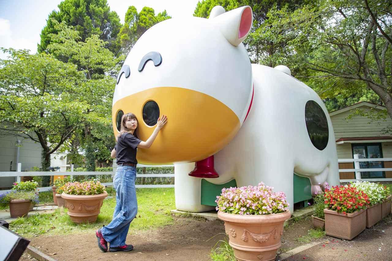 画像2: 成田ゆめ牧場に到着!