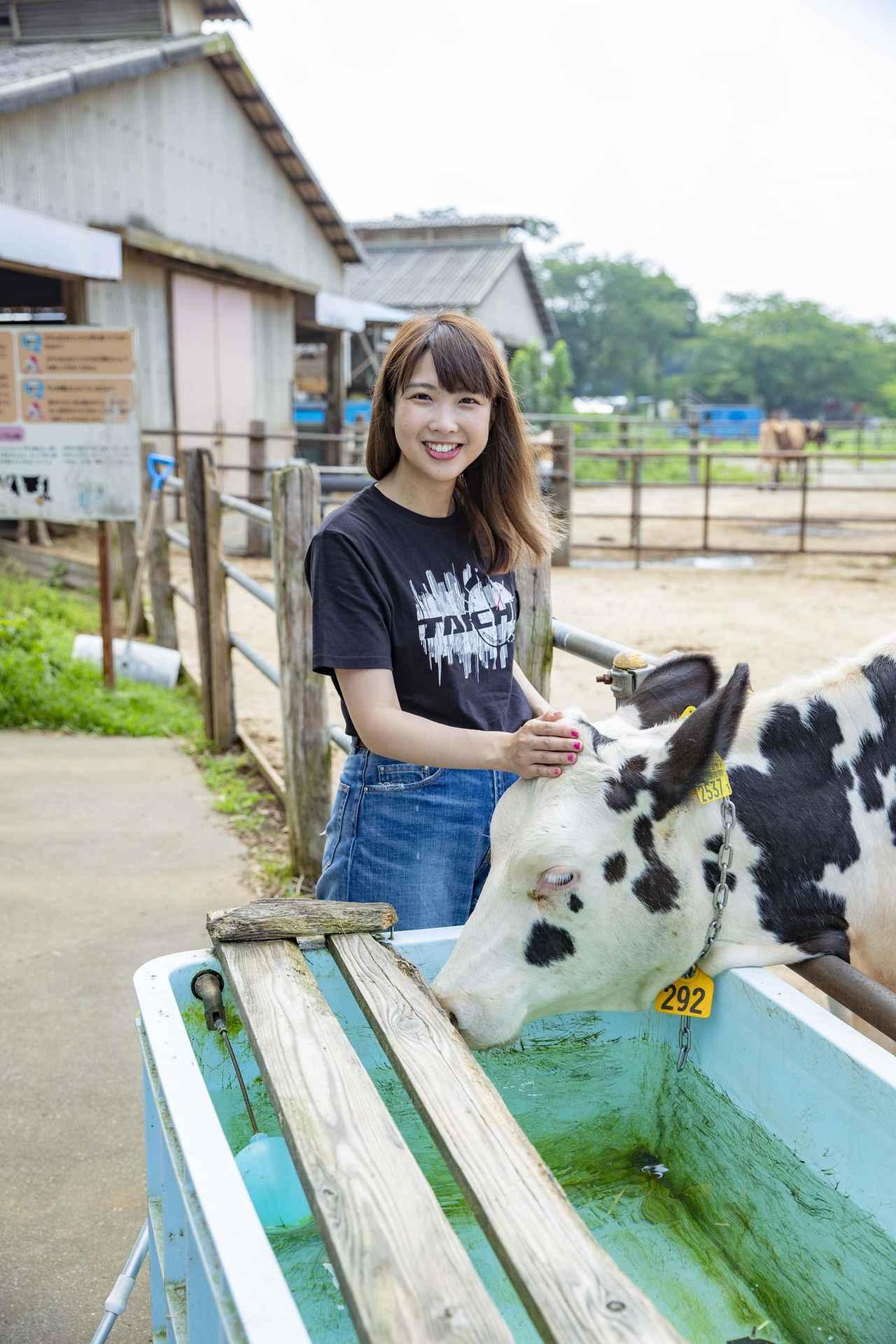 画像4: 成田ゆめ牧場に到着!