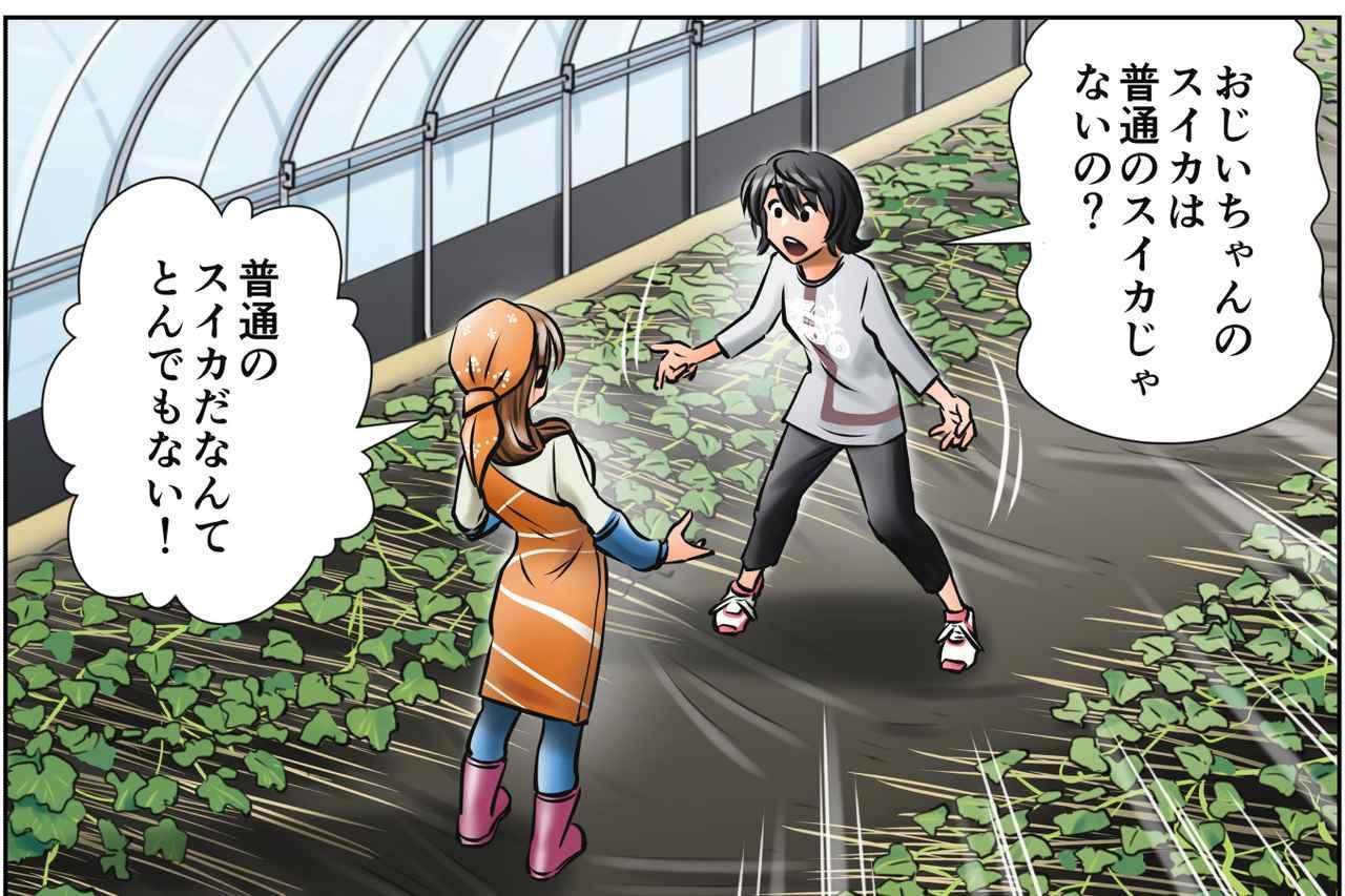 画像: じいちゃん、実はスゴイ人?! みのりの大地 第4話「みのりの決意」 - A Little Honda
