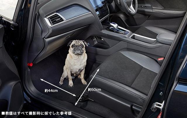 画像: 小型犬・床に座った状態 www.honda.co.jp