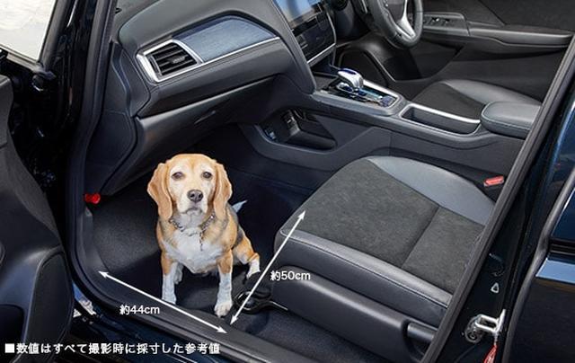 画像: 中型犬・床に座った状態 www.honda.co.jp