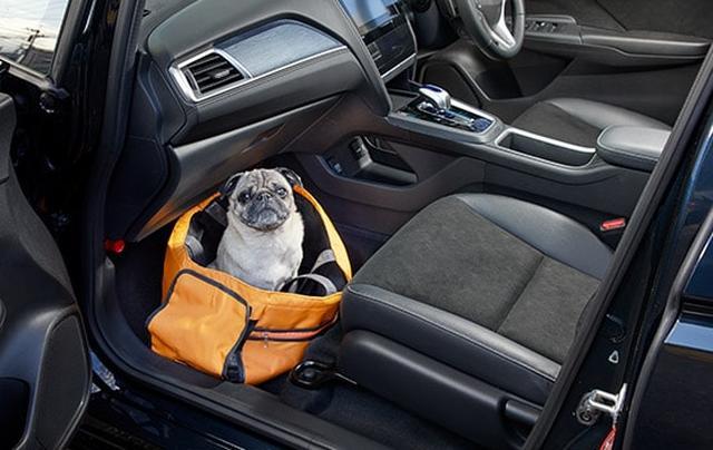 画像: 小型犬・ソフトタイプのキャリーに入れた状態 www.honda.co.jp