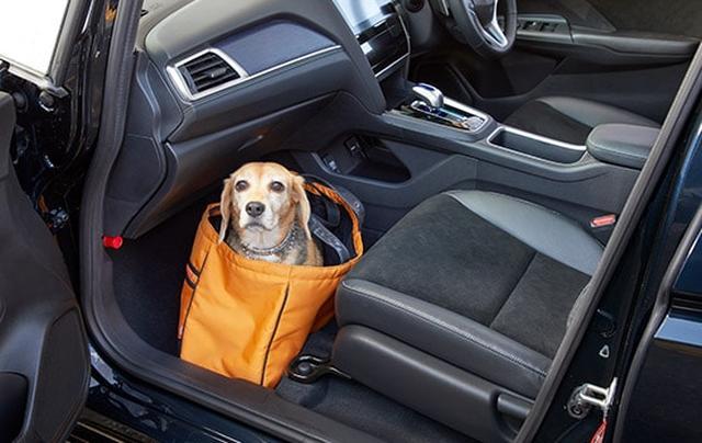 画像: 中型犬・ソフトタイプのキャリーに入れた状態 www.honda.co.jp