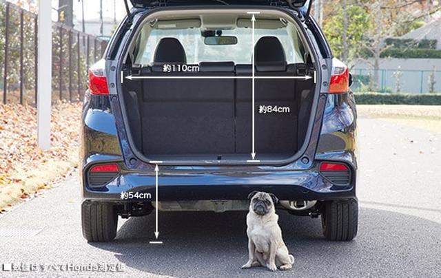 画像: 小型犬・テールゲートからの出入り www.honda.co.jp