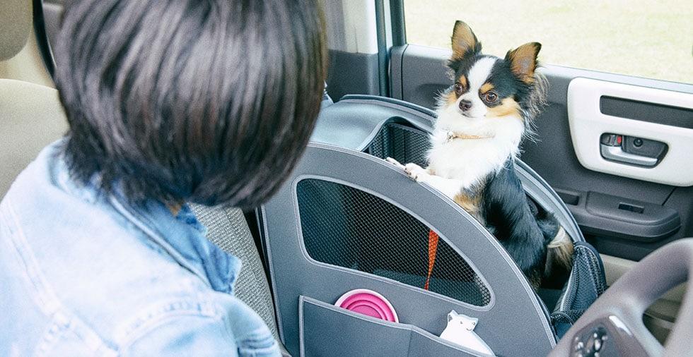 画像: ペットシートプラスわん www.honda.co.jp
