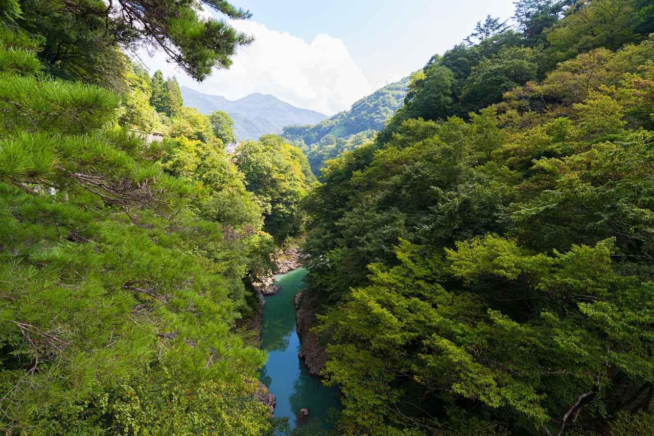 画像3: 吾妻渓谷(猿橋)へ到着!