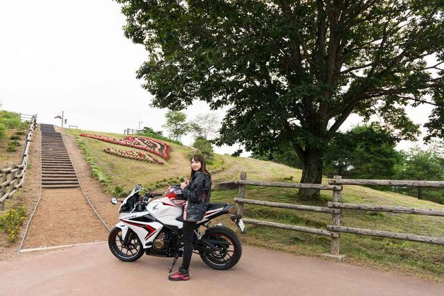 画像1: キャベツを堪能して到着した場所は、愛妻の丘!