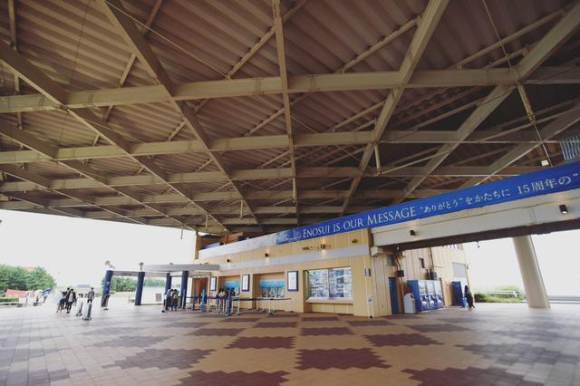 画像1: やってきたのは……新江ノ島水族館!