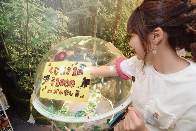 画像2: 一回1000円のくじ引きにチャレンジ☆