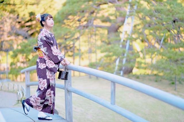 画像2: 小石川後楽園とは?
