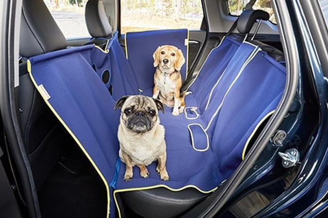 画像: 犬とドライブしたい人必見!ホンダの超参考になるページ発見 - A Little Honda | ア・リトル・ホンダ(リトホン)