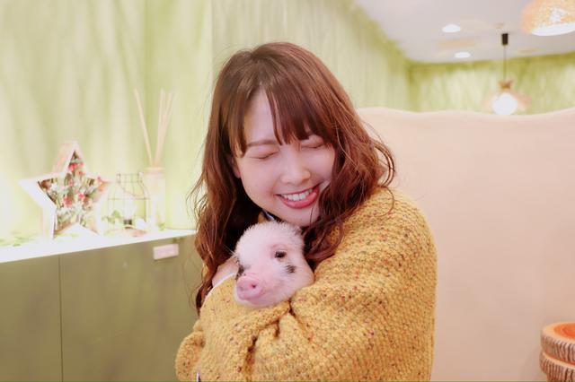 画像5: かわいいマイクロブタちゃんとの出会いに感激!