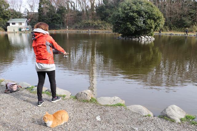 画像1: 釣り開始!!