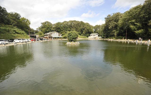 画像2: Berry Park FISH ON!王禅寺で釣り体験!