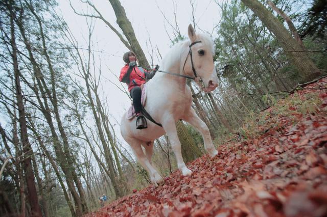 画像2: 森の中をゆっくりとお散歩!うまく乗れるかな?