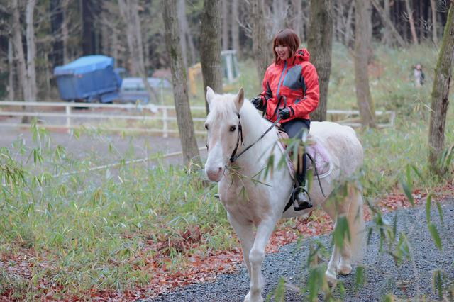 画像1: 森の中をゆっくりとお散歩!うまく乗れるかな?