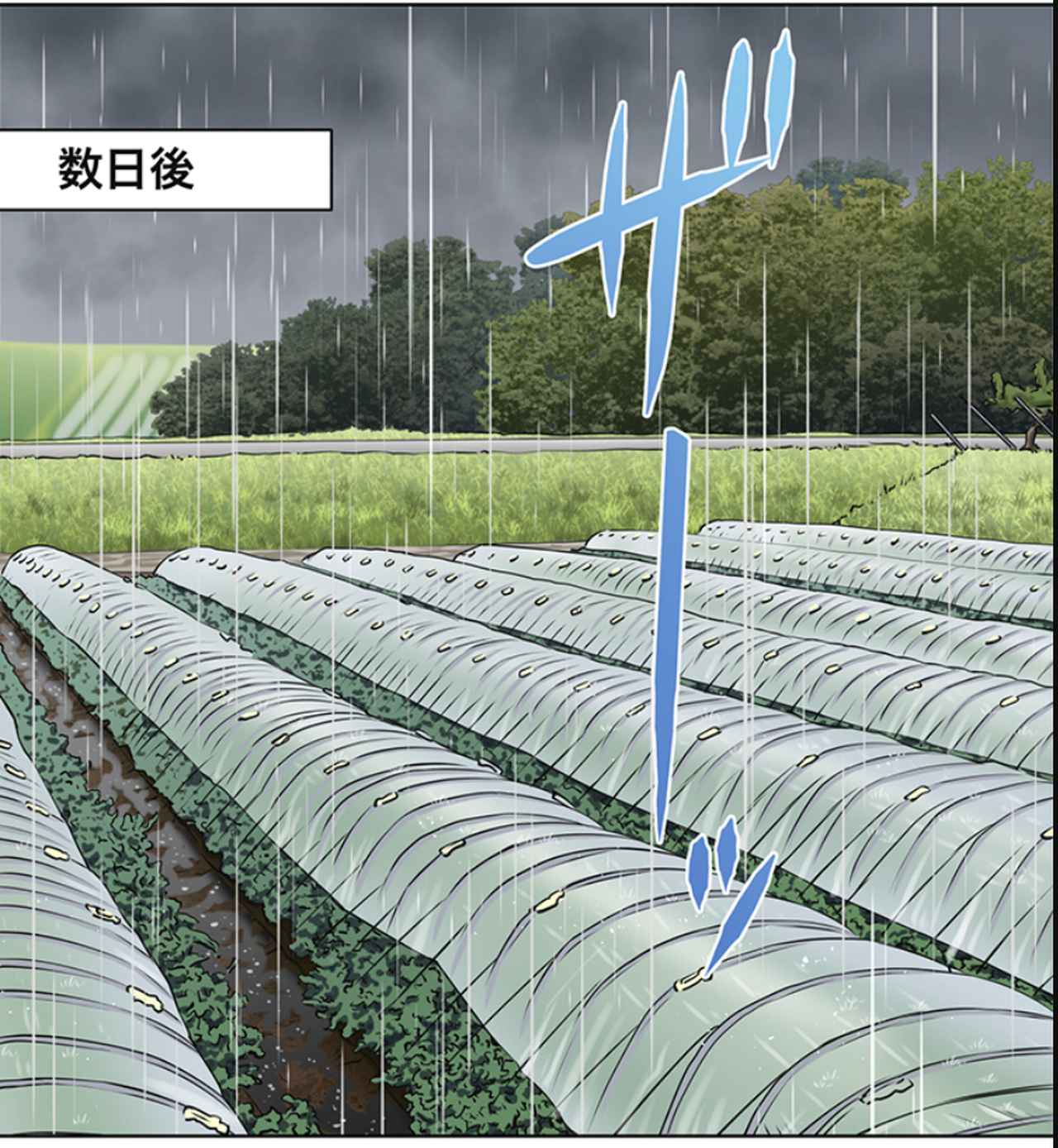 画像36: ja.honda-powerproducts.com