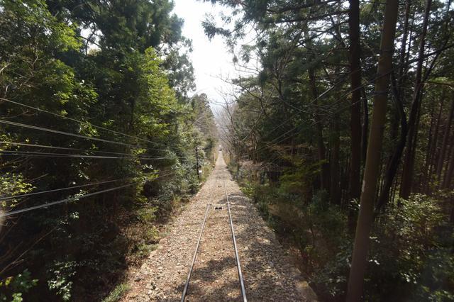 画像: ぐんぐん登るよどこまでも〜(←山頂まで!)
