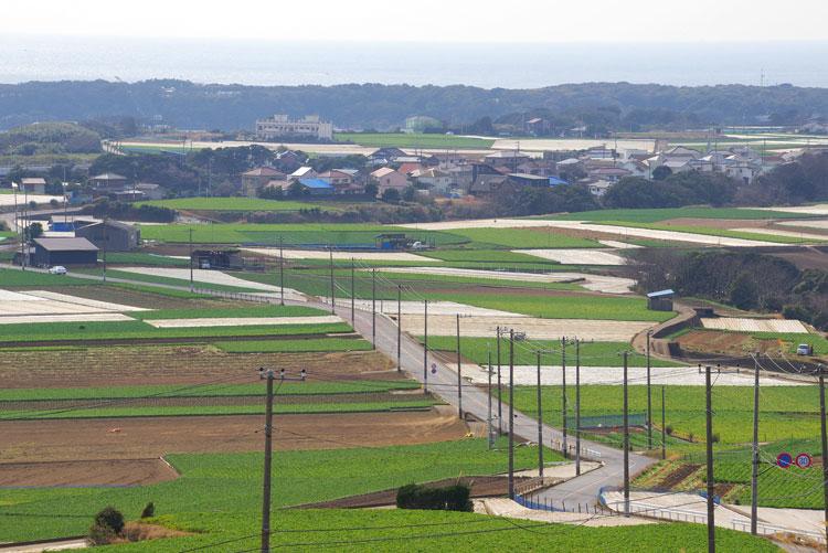 画像: 神奈川県・絶景とマグロを堪能 三浦半島