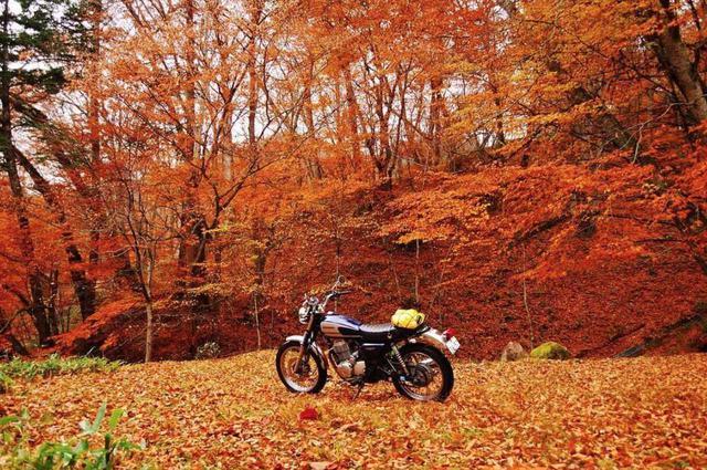 画像: リトホンインスタ部まとめ!【CBシリーズ CB400SS編】 - A Little Honda | ア・リトル・ホンダ(リトホン)