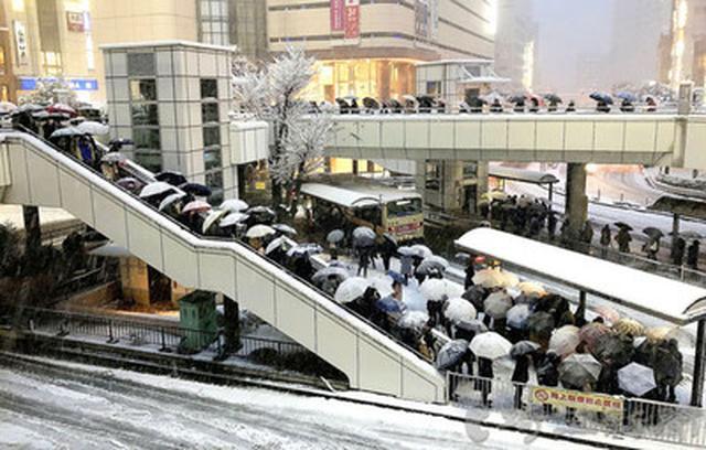 画像: 記録的な大雪