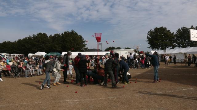 画像3: 子どもはもちろん、大人だって楽しい大運動会