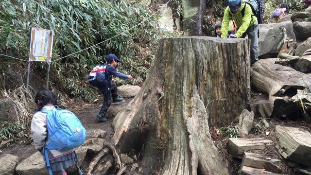 画像2: 3) 筑波山 おたつ石&白雲橋コース(茨城県) 後半は巨岩が続く冒険ルート!