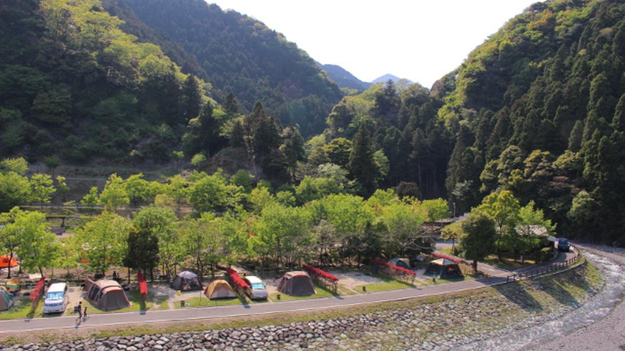 画像: 【魅力1】自然も開放感もたっぷり! 好みで選べるキャンプサイト