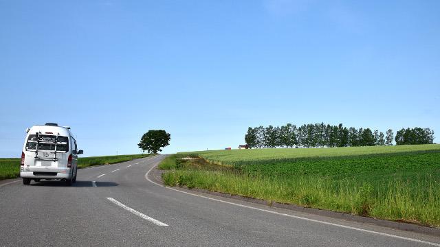 画像: 2.パッチワークの路