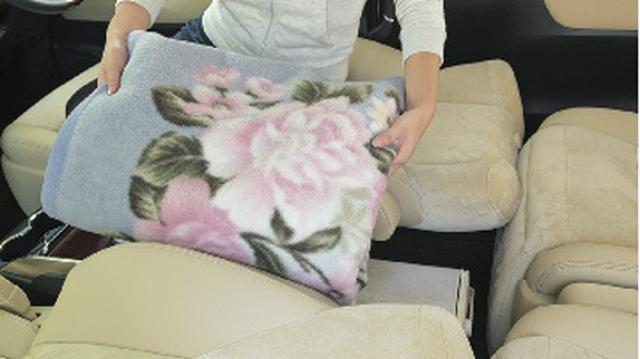 画像2: 一般車で安眠するための、カラダ水平アイデア選手権!