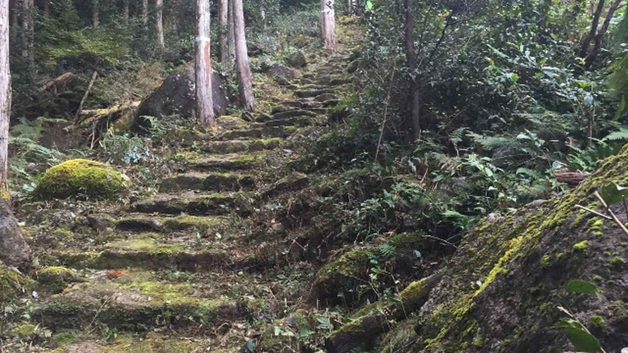 画像1: 完走への最終セクション。 ラスボスは急坂の階段だ!