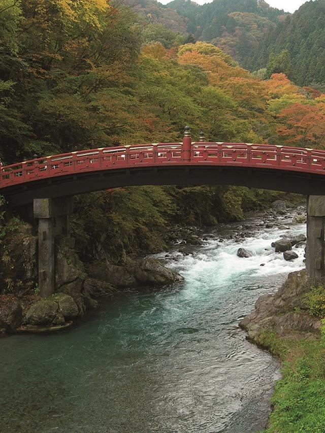 画像4: STEP3 男体山(栃木県)