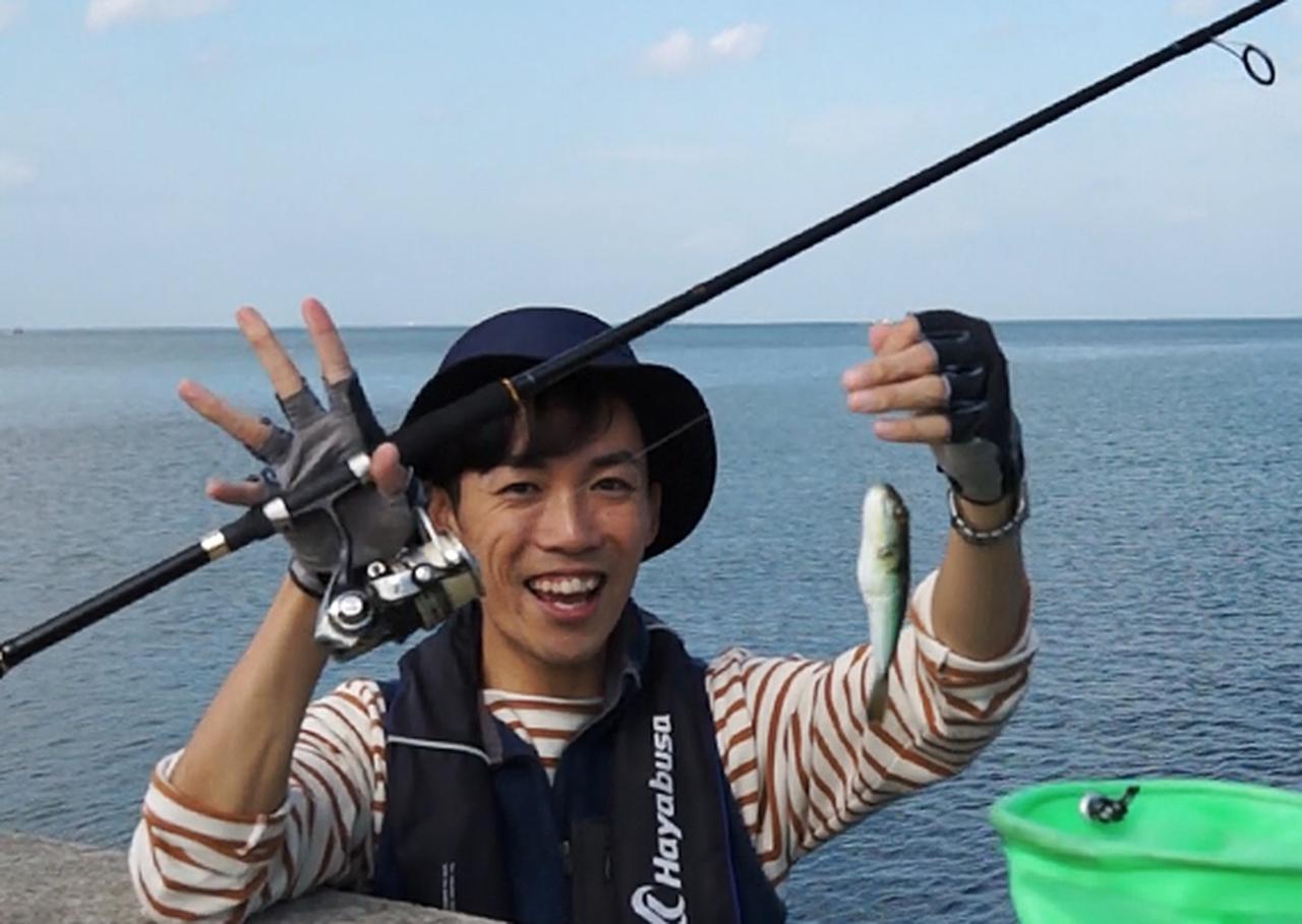 画像: フグも可愛いゲストです。(※フグは毒をもった魚です。持ち帰らず優しくリリースしてあげよう)