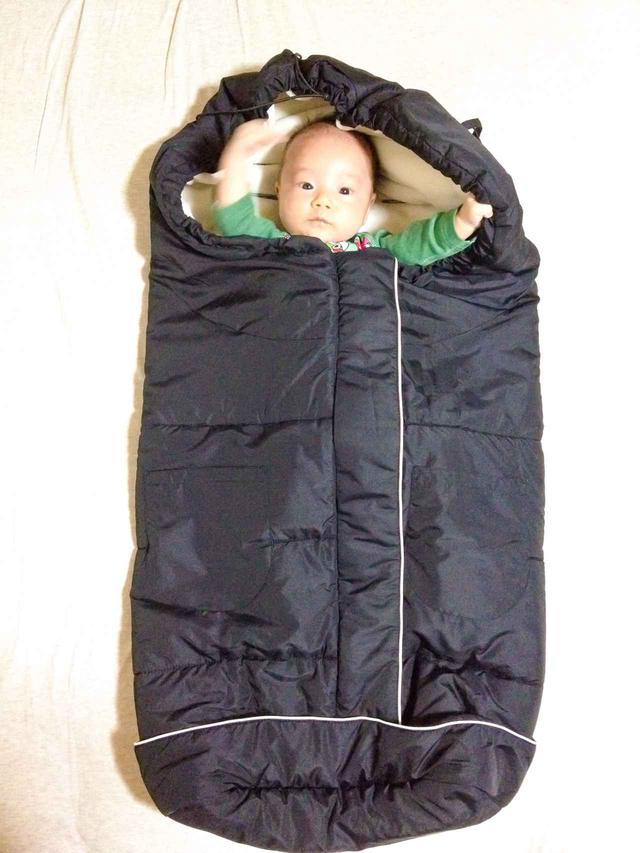 画像: アリのキャンプデビューは0歳1カ月。