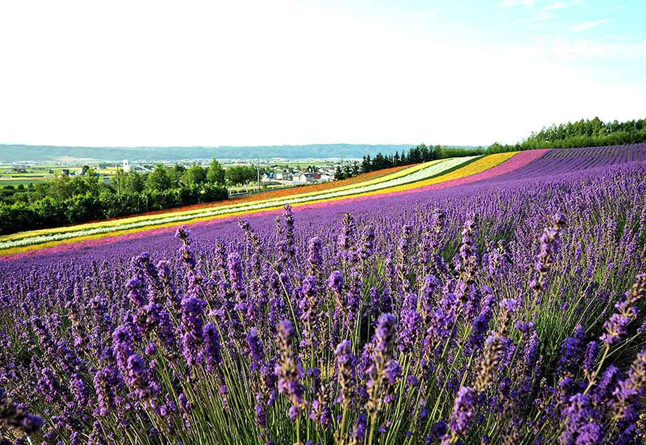 画像: <春と夏ベストシーズンをめぐる車中泊旅14ルート>