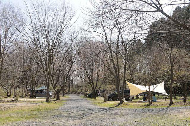 画像: キャンプ場をしっかり見極めて、 楽しいファミリーキャンプデビューを!