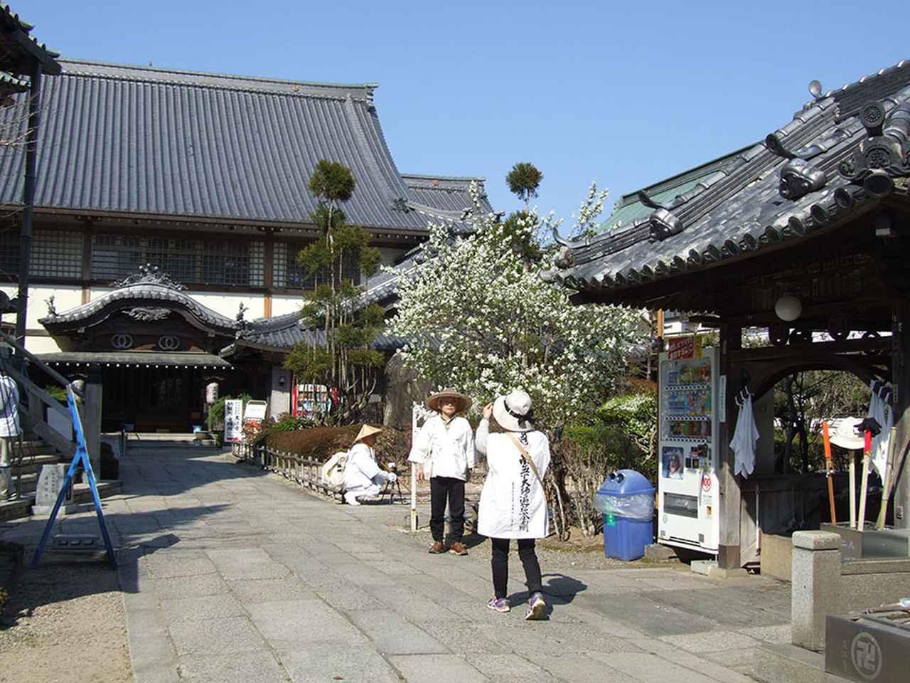 画像: 19番札所 立江寺/お遍路に4カ所ある「関所寺」で最初に訪れるのが立江寺。花鳥風月などが描かれた天井画も特徴。