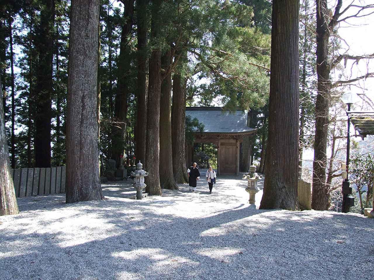 画像: 12番札所 焼山寺/札所では2番目に高い場所にある焼山寺。昔は険しい道だったが、今はクルマで行ける。参道や境内には樹齢数百年という杉の巨木が立ち並ぶ。