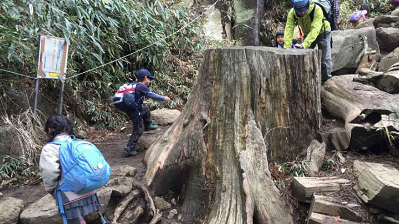 画像2: 「筑波山 おたつ石&白雲橋コース(茨城県)」  後半は巨岩が続く冒険ルート!