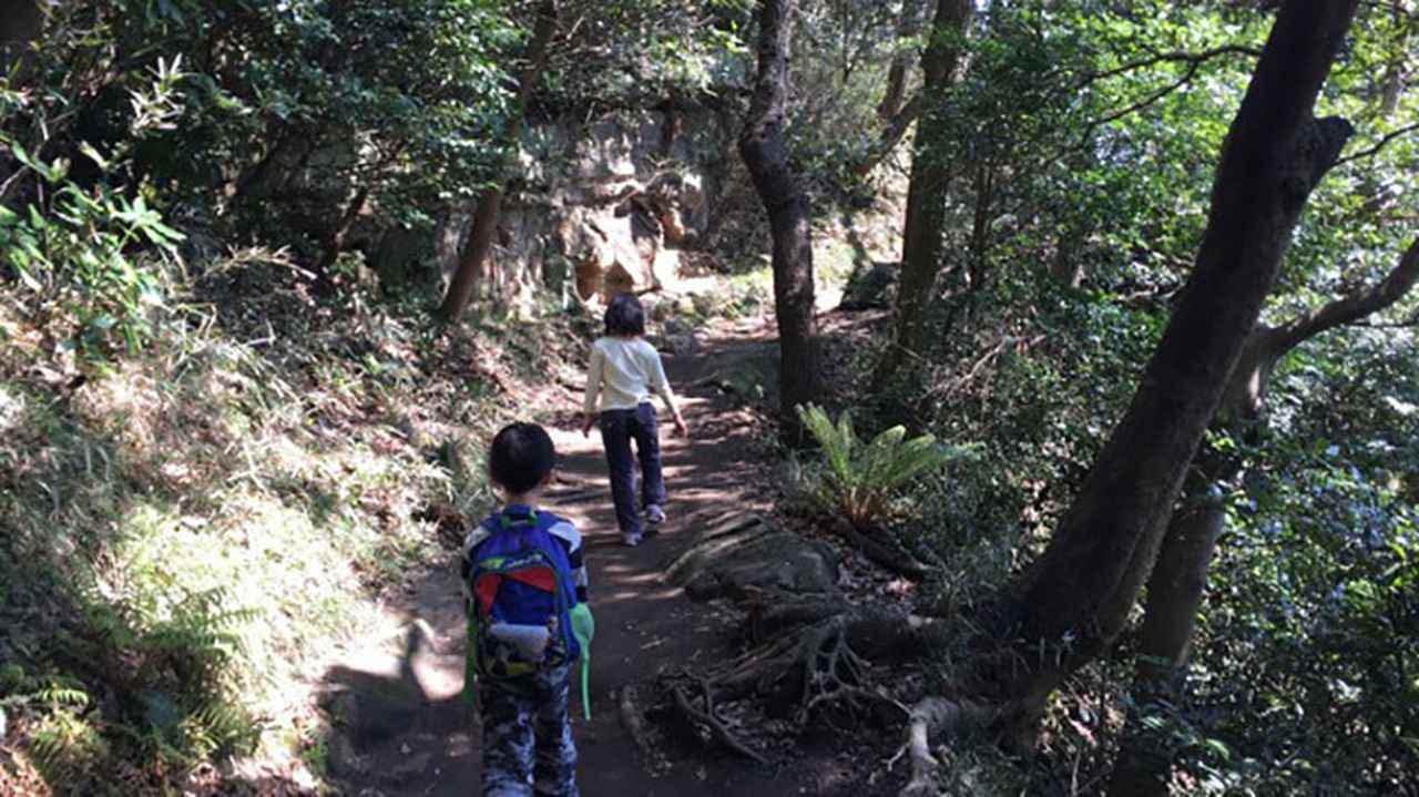 画像: ・大人の足で1時間〜1時間半で歩けるコース