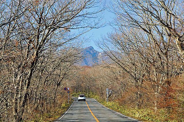 画像: 那須湯本から先の道は、かつてボルケーノハイウェイと呼ばれた有料道路で、2009年に無料化された。
