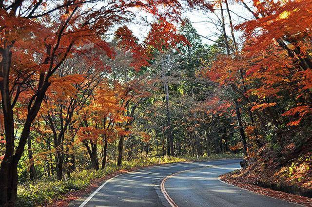 画像1: 秋は鬼怒川温泉に出て「日塩(にちえん)もみじライン」で塩原温泉までのドライブが◎