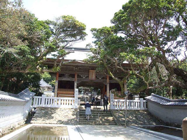 画像: 38番札所 金剛福寺。境内には弘法大師ゆかりの大きな亀の石像が鎮座する。