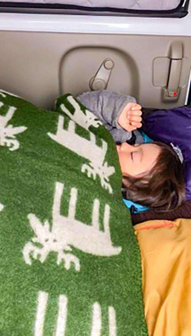画像: よく眠っているアリもそろそろ起こさなきゃ。