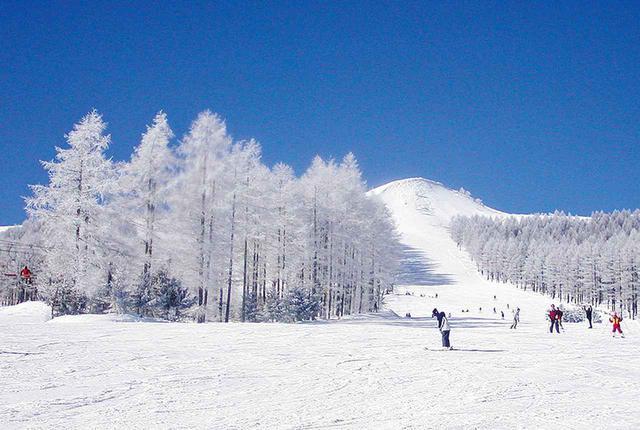 画像: 長和町にあるエコーバレーのゲレンデ。この日の朝は霧氷が見られた。