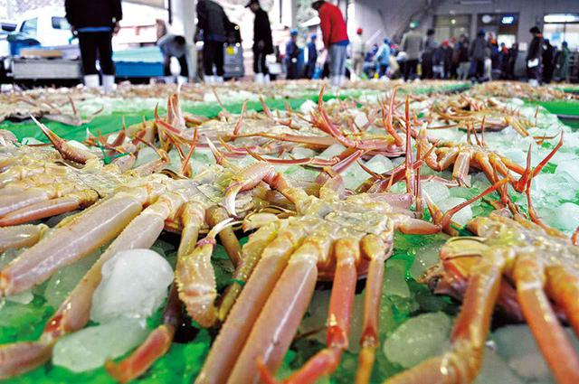 画像: 京都の丹後半島にある間人(たいざ)港のセリ。早朝の漁で水揚げされた松葉ガニは、午後からセリにかけられ、そのまま京阪神の料亭に運ばれる。