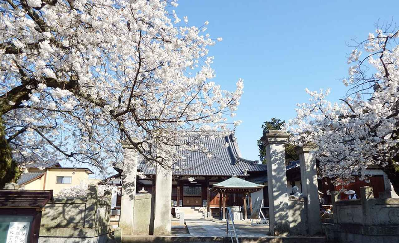 画像: 59番札所 国分寺。写真/Dokudami