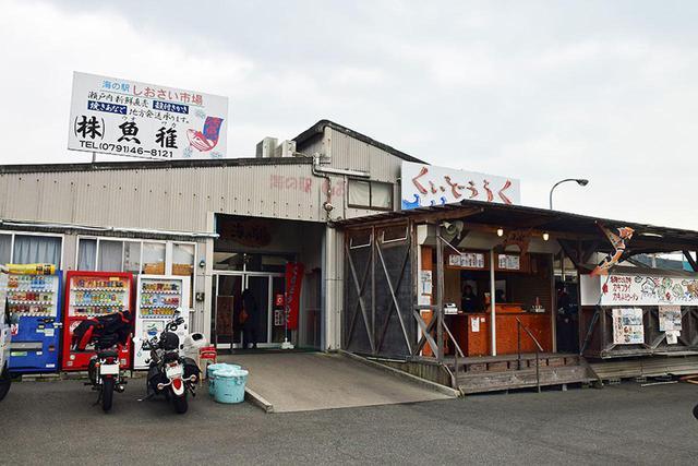 画像2: 兵庫グルメ4 播磨の牡蠣