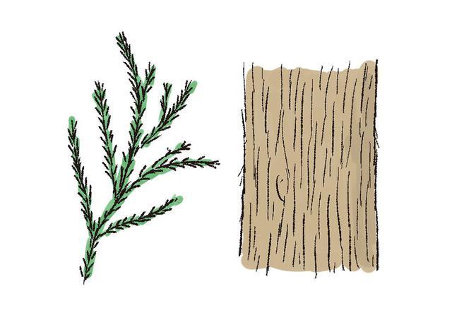画像1: 薪選びのコツ