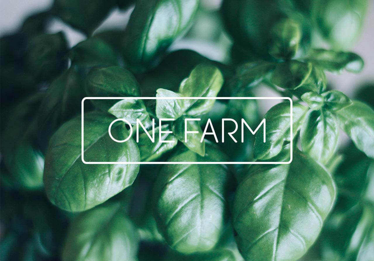 画像: ONE FARM 1つの箱でスマート農業体験